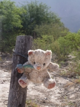 Hommage aux femmes disparues ou victimes dans le nord-ouest argentin